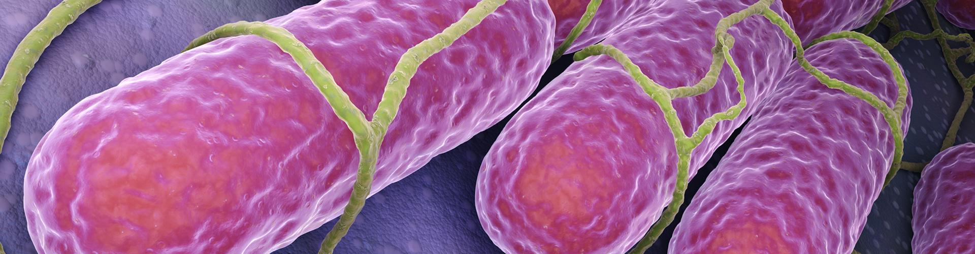 Uitbreiding capaciteit pathogeen analyses bij Groen Agro Control